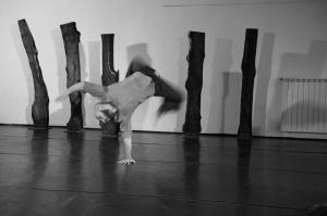 coreografia-d-arte-Daniele-Ninarello-Carlini-Ph-Alvise-Crovato